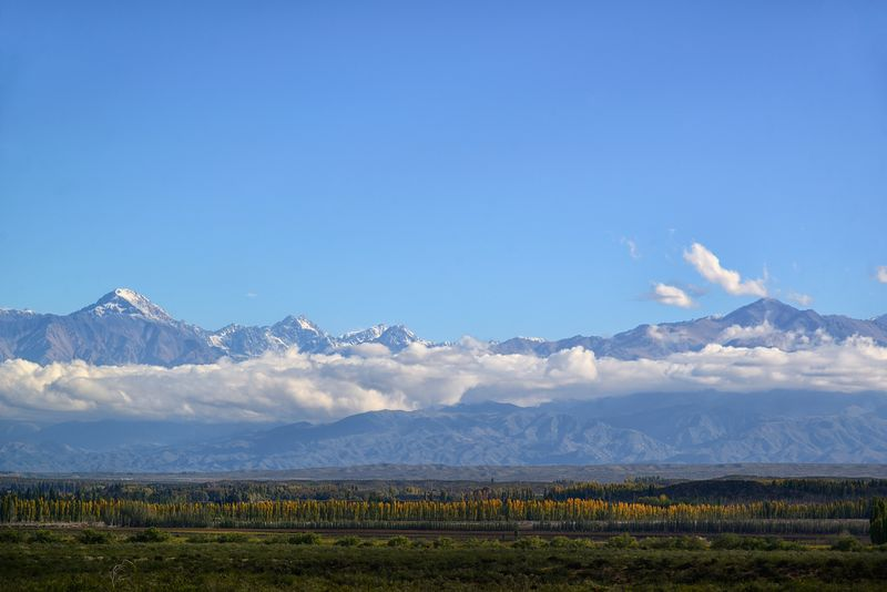 Argentina, Mendoza, View of Andes Mountains across Uco Valley