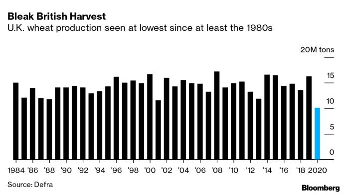 Bleak British Harvest