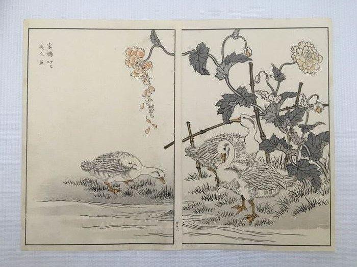 "Diptych of original etchings on wood format oban - Kono Bairei (1844-1895) - ""Bairei hyakucho gafu"" 楳嶺百鳥画譜 天 (Bairei's Album of One Hundred Flowers and Birds) - 1881 (Meiji 14) - Japan - Catawiki"