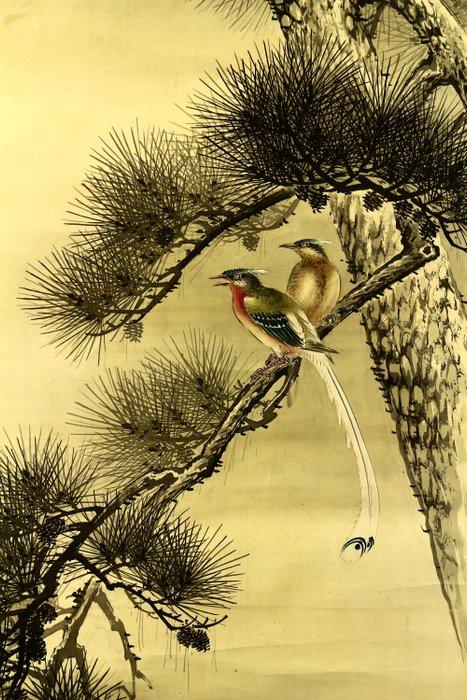 Hanging scroll - Silk - Birds on pine tree - With signature 'Yu-nen' 有年 seal 'Yasuda' 安田 - Japan - ca 1912(Taisho) - Catawiki