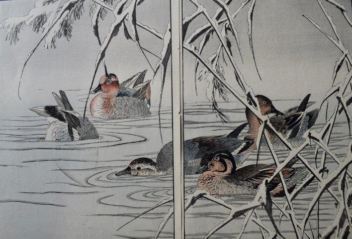 "Original woodblock print double-page illustration - Imao Keinen (1845-1924) - Ducks on a lake - From ""Keinen kacho gafu"" (Flower and bird Album by Keinen) - Japan - 1891"