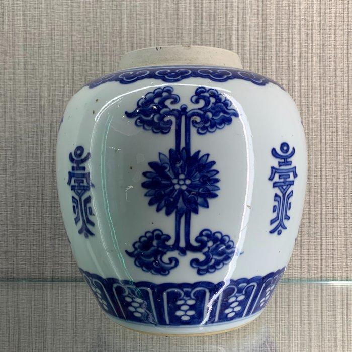Ginger jar (1) - Blue and white - Porcelain - China - Qing Dynasty (1644-1911)