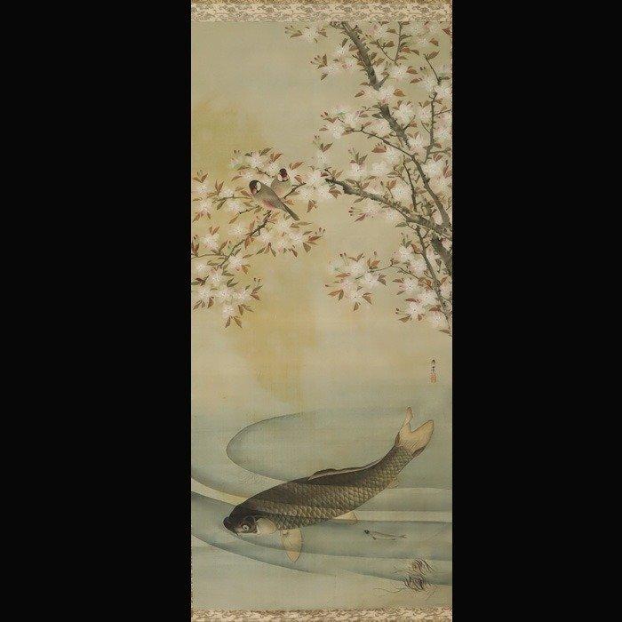 Hanging scroll painting - Silk - cherry blossom,carp,ayu ( Japanese sweetfish ) - After Maruyama Oshin (1790-1838) - Cherry blossoms, carp, and ayu (Japanese sweetfish) - With signature 'Oshin' 應震 - Japan - 19th century