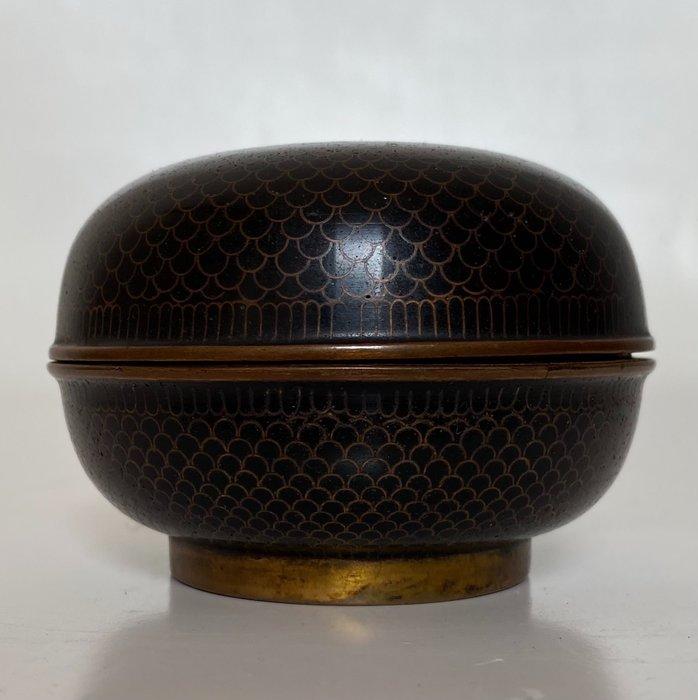 Lid box - Cloisonne enamel - Japan - Meiji period (1868-1912)