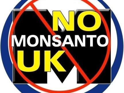 Image result for monsanto in the uk