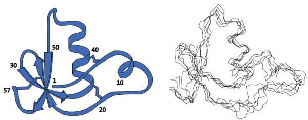1985年に構造解析に成功した BUSI IIA タンパク質(ノーベル財団の資料より引用)