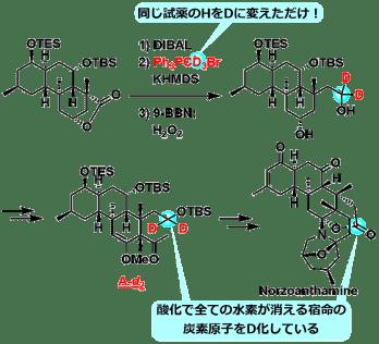 next_move_4a_4