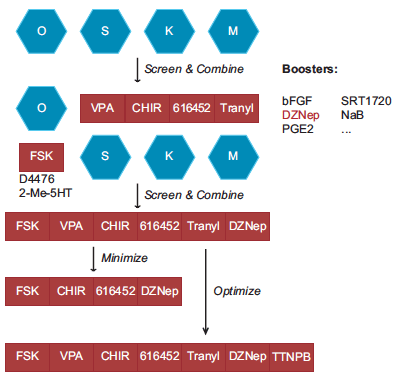 2015-11-11_15-24-39