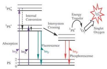 PDT mechanism