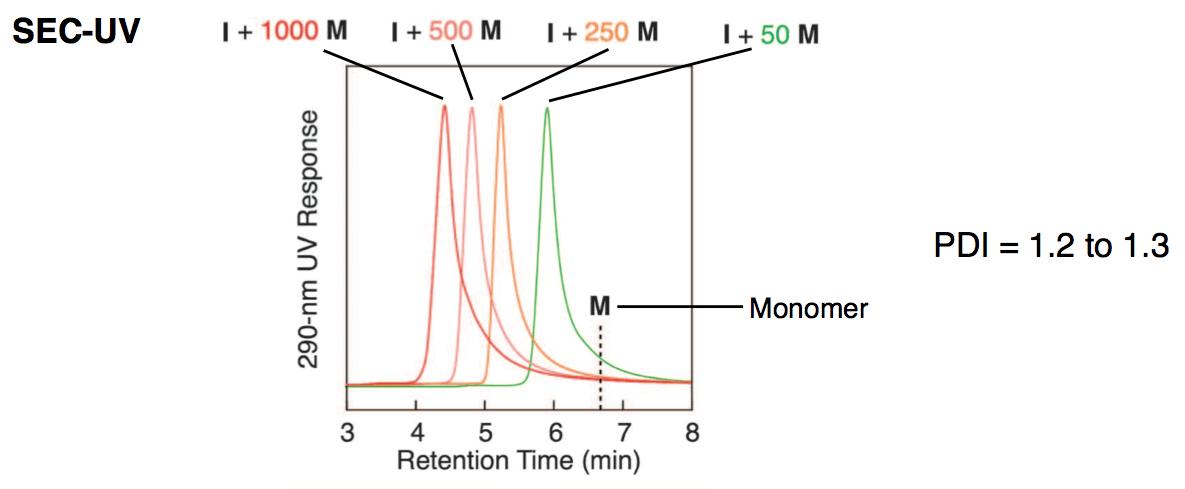 図4. 重合開始剤に対して50当量、250当量、500当量、1000当量の準安定モノマーを作用させた際の分子量分布