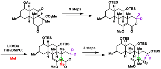 norzoanthamine_11