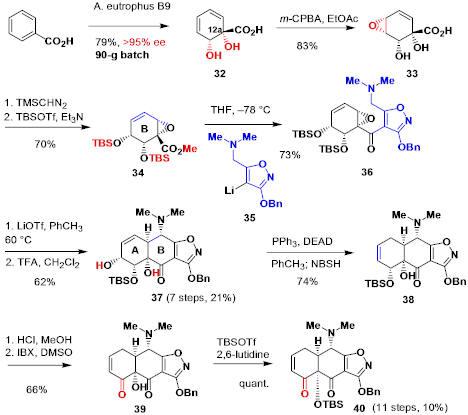 tetracycline_8