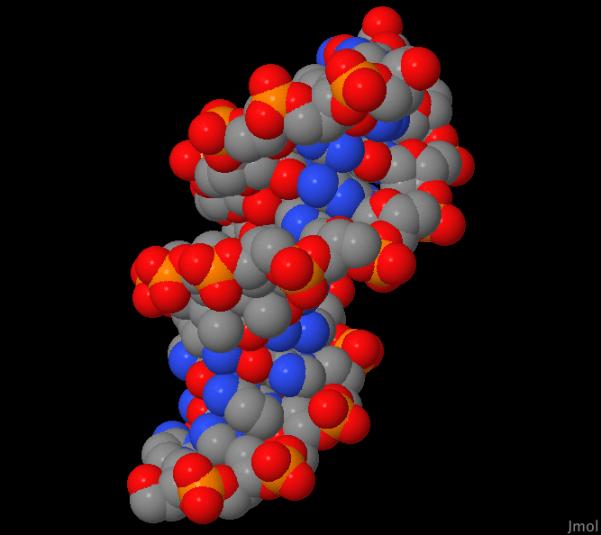PDB-ChemStation01-D