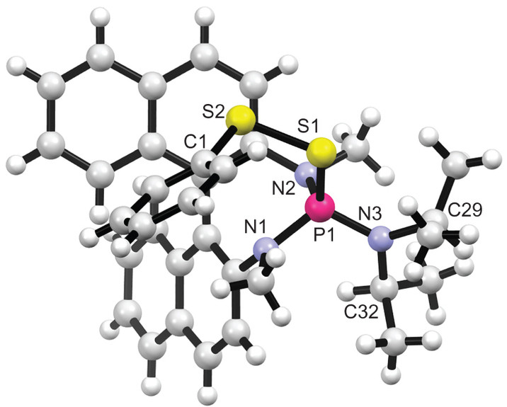 触媒活性種5bのX線構造