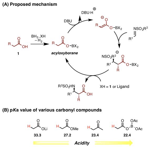 カルボン酸だけを触媒的にエノラート化する | Chem-Station (ケムステ)
