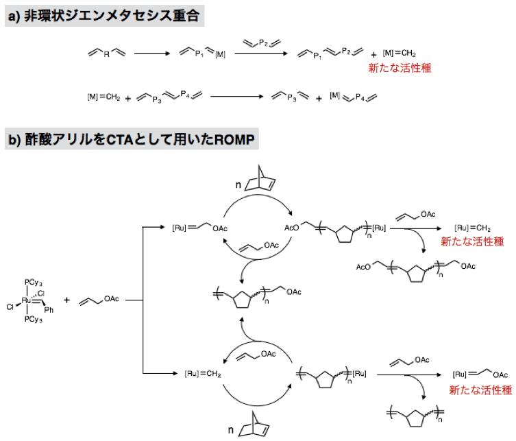 図2. (a) 非環状ジエンメタセシス重合、(b) 酢酸アリルをCTA として用いたROMP