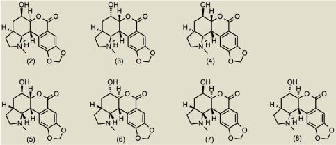 NobilisitineA2