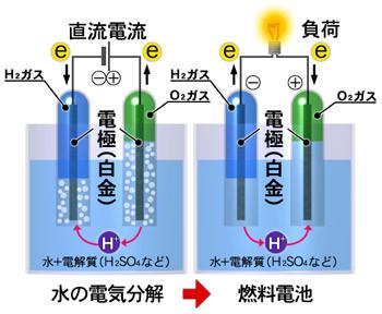 燃料電池のしくみ(出典:FCCJ 燃料電池実用化推進協議会)