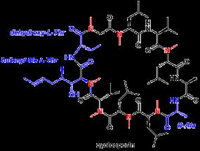 cyclosporin