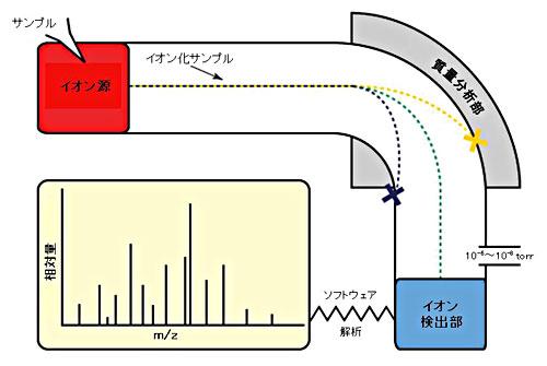 質量分析計の模式図(こちらのサイトより引用)
