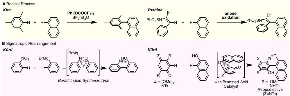 図1. 金属触媒を用いない直接的ビアリール結合形成反応