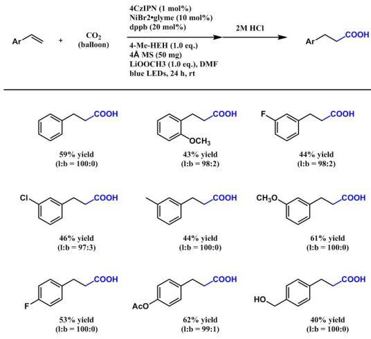 anti-Markovnikov型の基質一般性