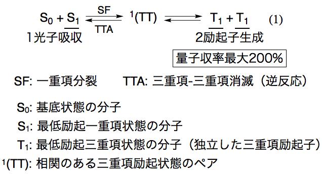 Fig0_Sakai