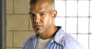Prison Break : Que sont-ils devenus ? photo 4