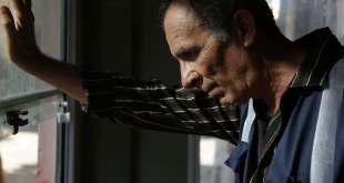 The Insult photo 3