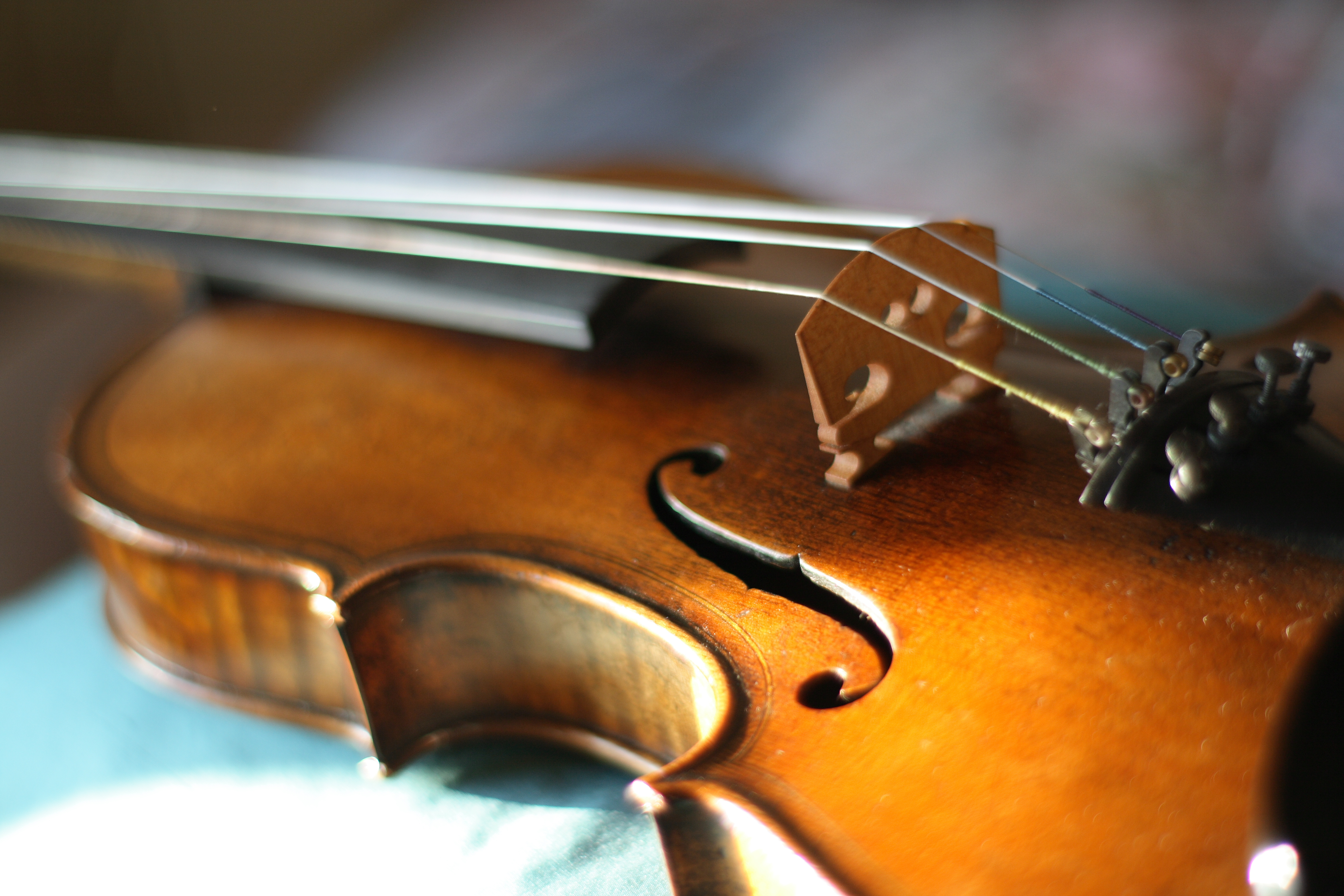 What S The Difference Between A Violin And A Viola