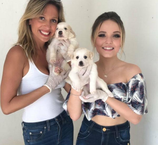 Larissa Manoela doa vira-lata que adotou de Luísa Mell - Notícias - Clube  FM 104.7