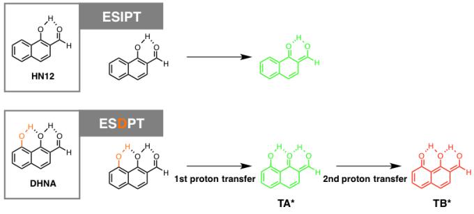 图3 ESDPT分子设计