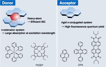 图4 TTA-UC中供受体分子的选择