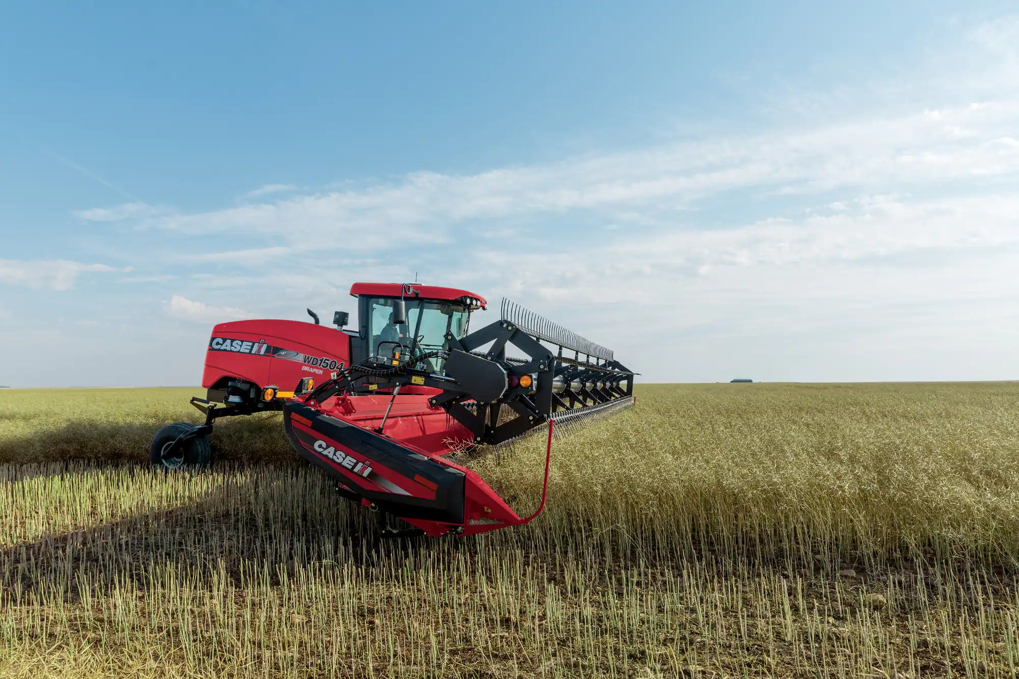 Swather And Windrower