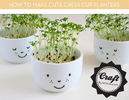 How To Make These Cute Cress Cup Planters