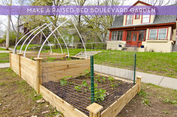 How to make a raised-bed boulevard garden
