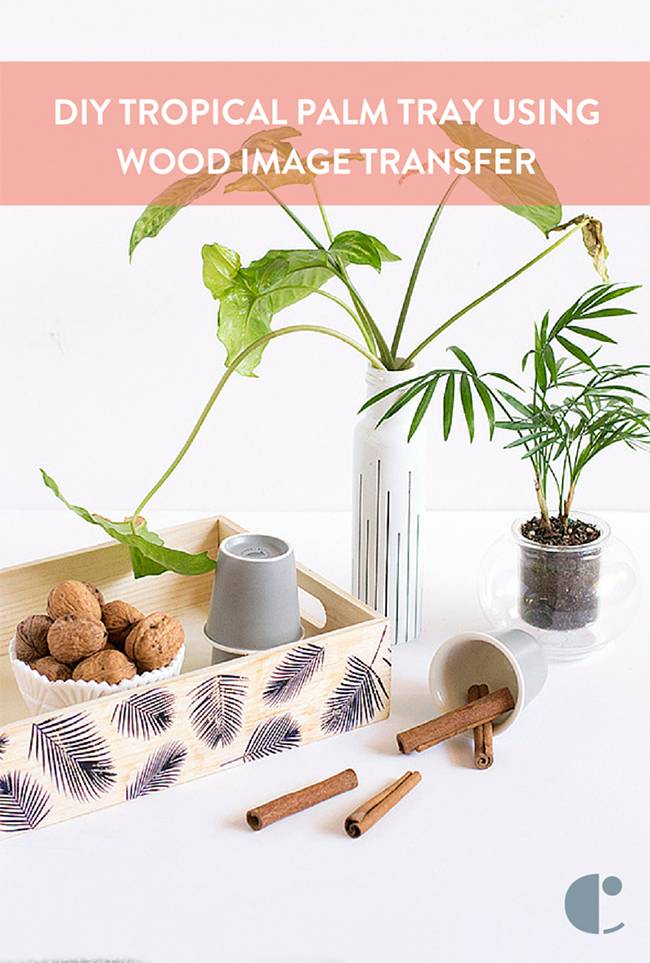 How To: Transfer Images to Wood and Make a  Tropical Palm Tray