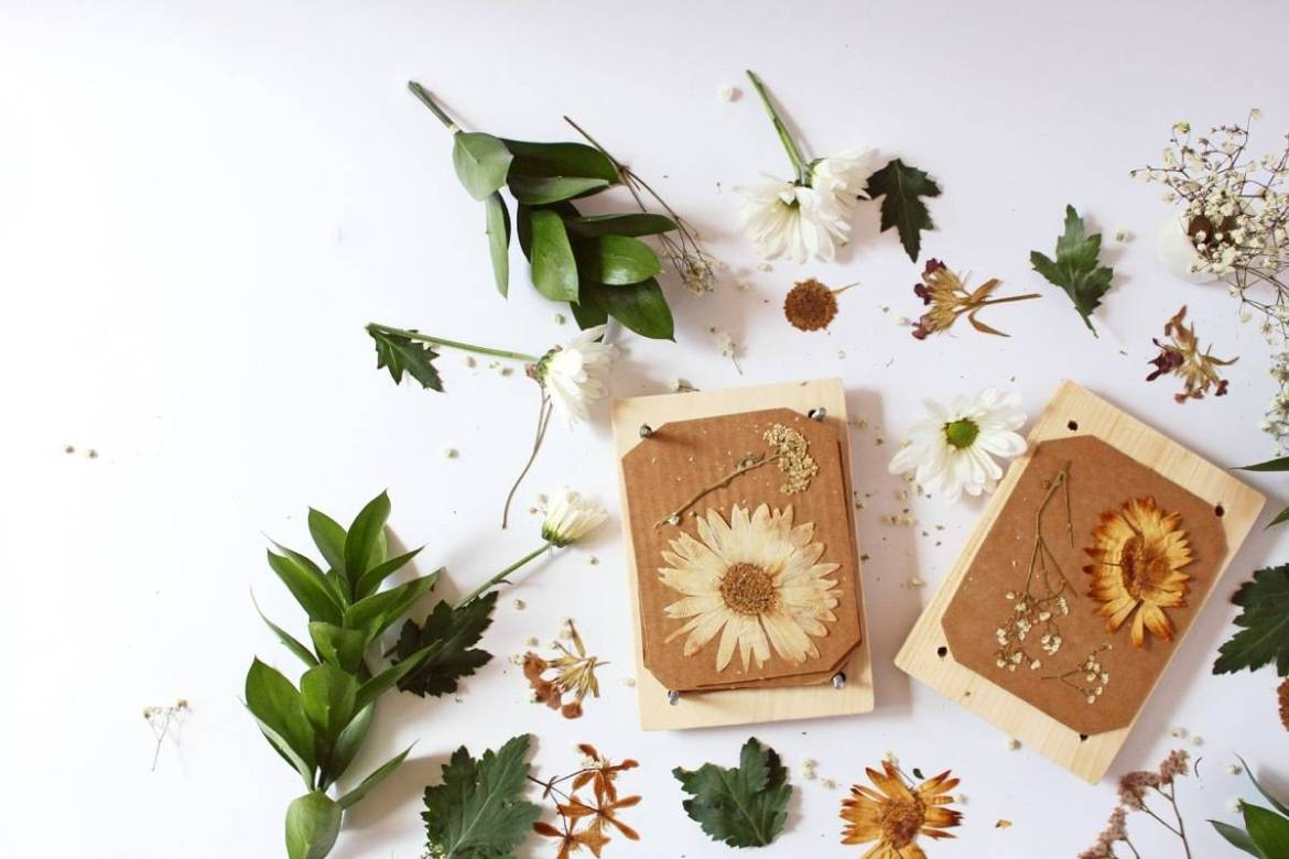 How to make your own flower press