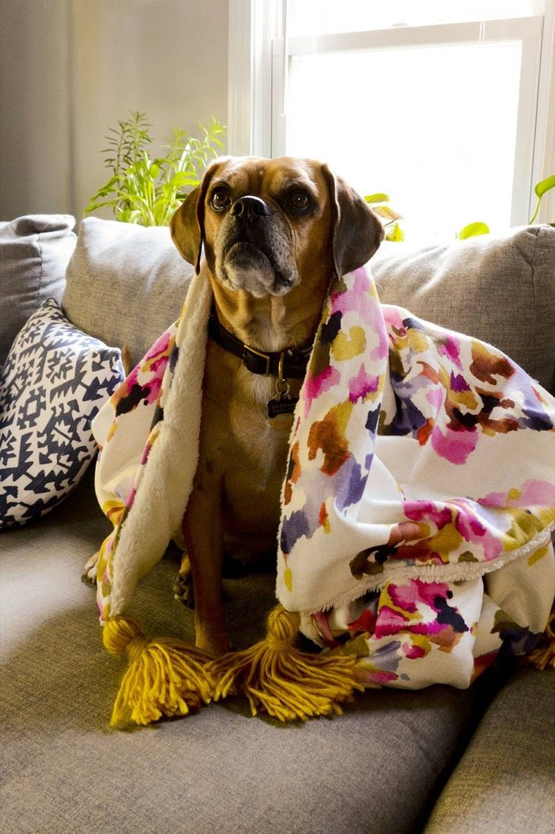 99 ways to use fabric to decorate your home   Make a throw blanket