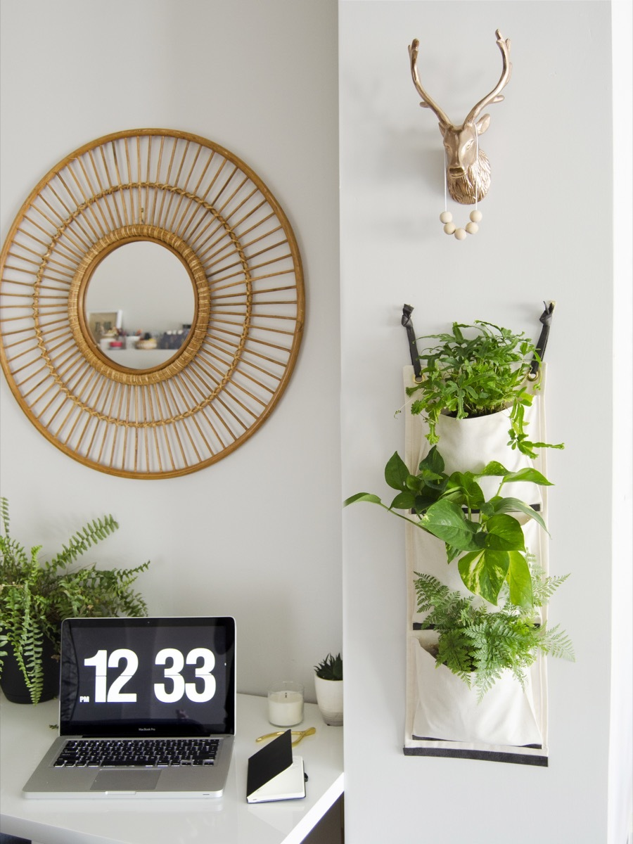 DIY hanging fabric planter to organize your indoor greenery
