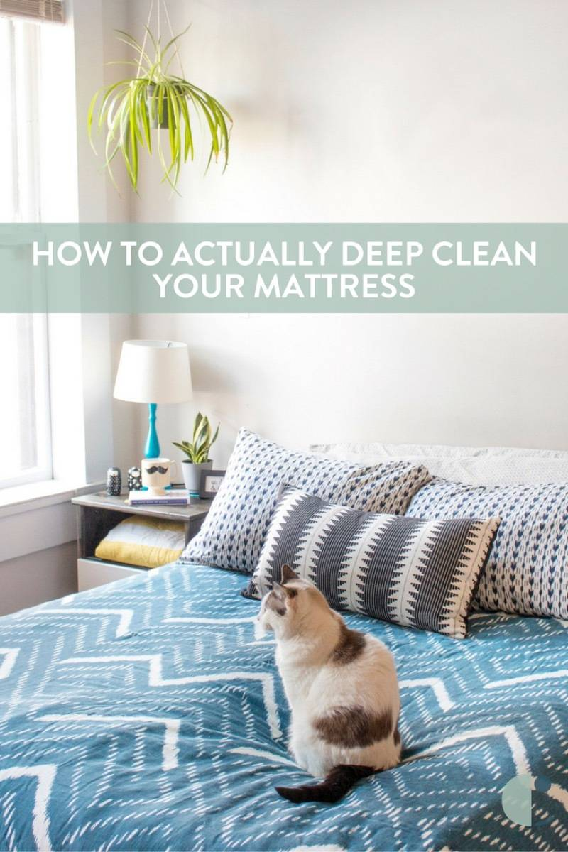 Start the new year with a new (feeling) bed! Cleaning Your Mattress: A step by step guide (with video!)