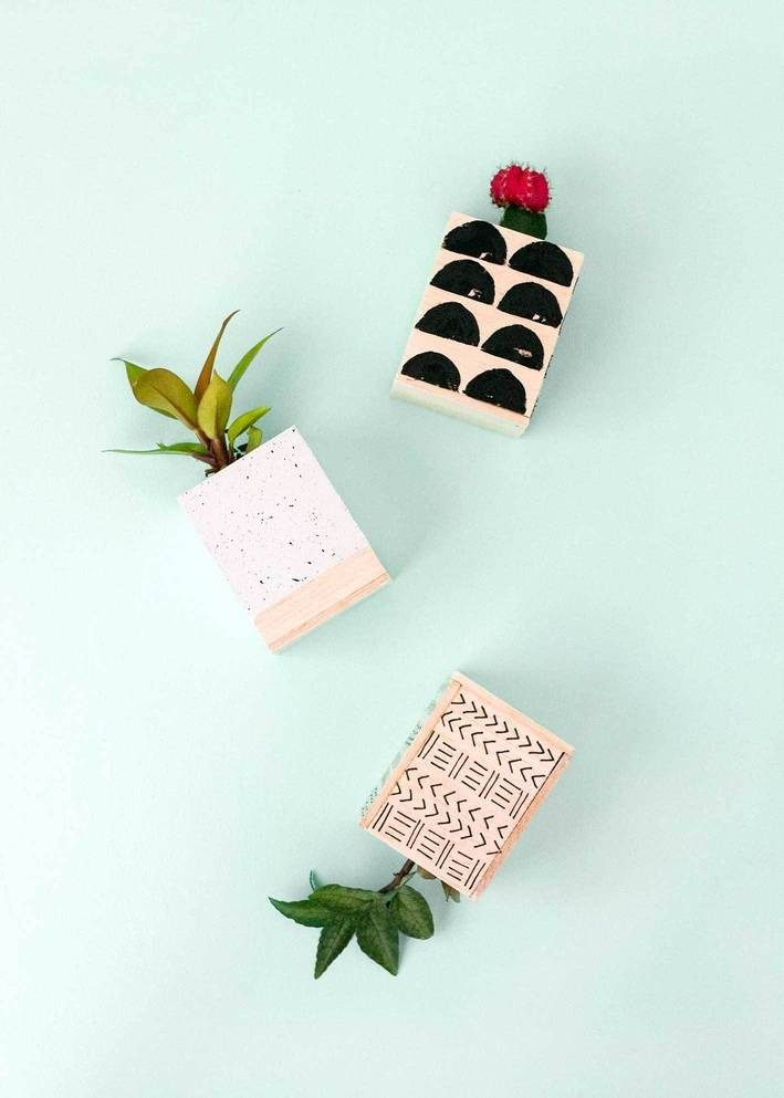 DIY Plant Projects