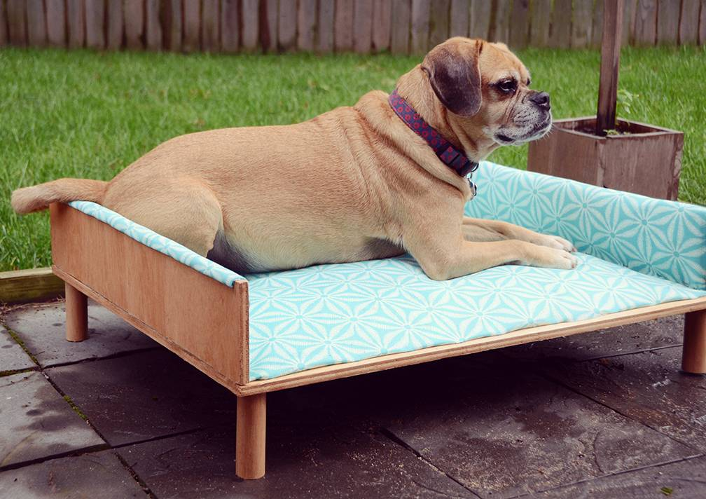 DIY Upholstered Outdoor Dog Bed