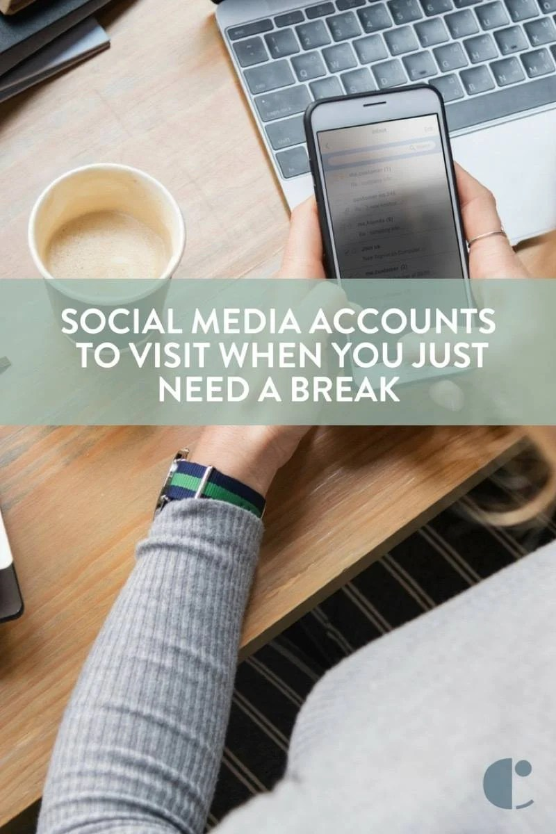 Social media accounts to follow when you need a break