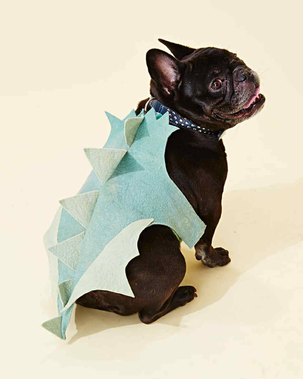 Halloween dragon dog costume