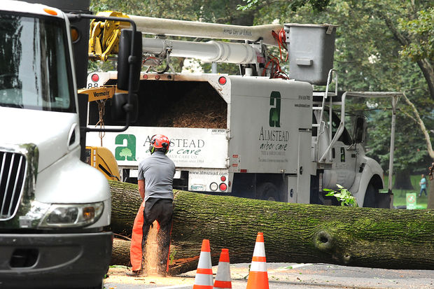 Workers chainsaw a tree that fell on a mother and her three children in Central Park on Tuesday, Aug. 15, 2017.
