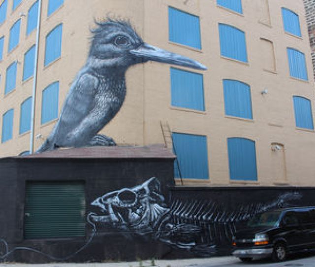 This Mural By Internationally Known Street Artist Roa Is On The Back Corner Of A Storage