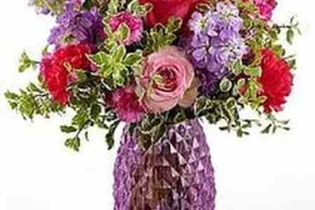 Beautiful flowers 2019 seminole flower shop beautiful flowers seminole flower shop various pictures of the most beautiful flowers can be found here find and download the prettiest flowers ornamental plants mightylinksfo