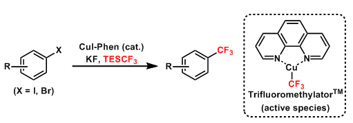 Amii Trifluoromethylation