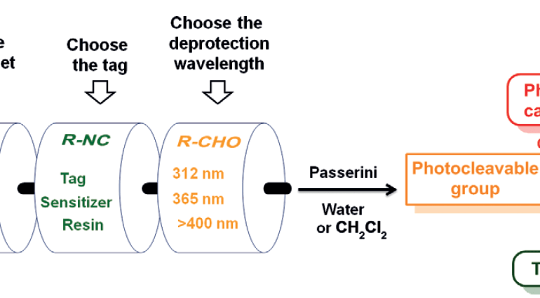 Photocaging of Carboxylic Acids: A Modular Approach